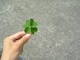 good-luck.jpg_500.jpg