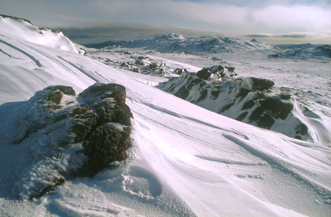 ben-lomond-winter-snow.jpg