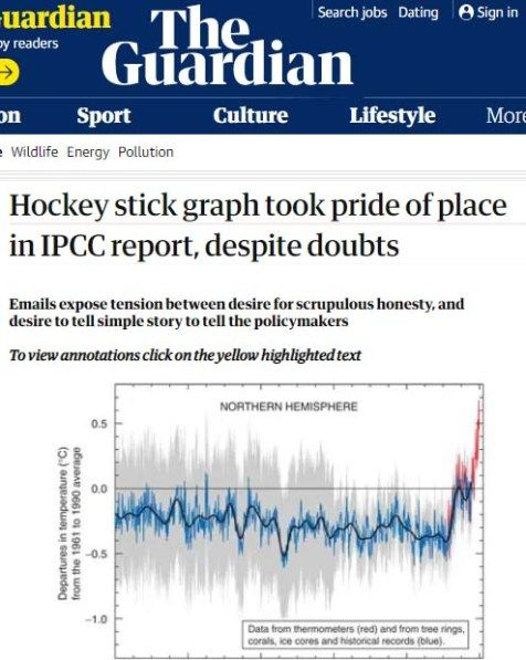 Image result for michael mann's hockey stick graph