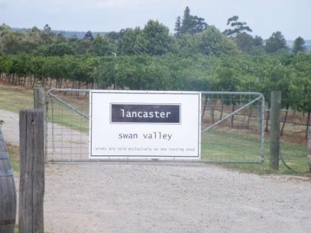Going around tasting wine in Swan valley