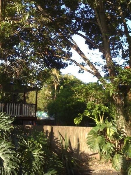 Garden at temporary accommodation