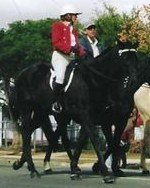 Going to my Citizenship Ceremony, Beaudesert Country & Horse Festival 2004