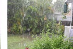 Rain Christmas day 2010