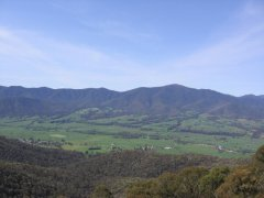 Looking over the King Valley