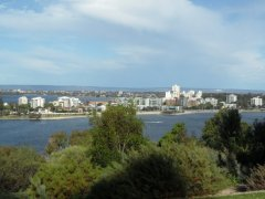 View of Perth City from King's Park