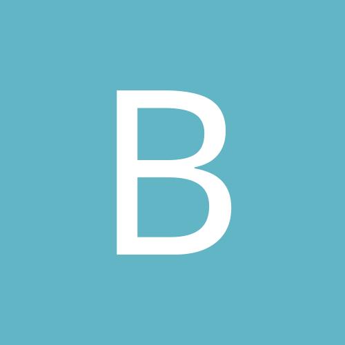 Brissybear