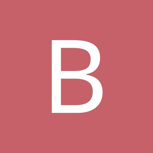 brightonbee