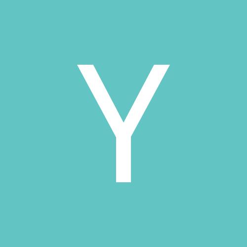 Yorkiesx5