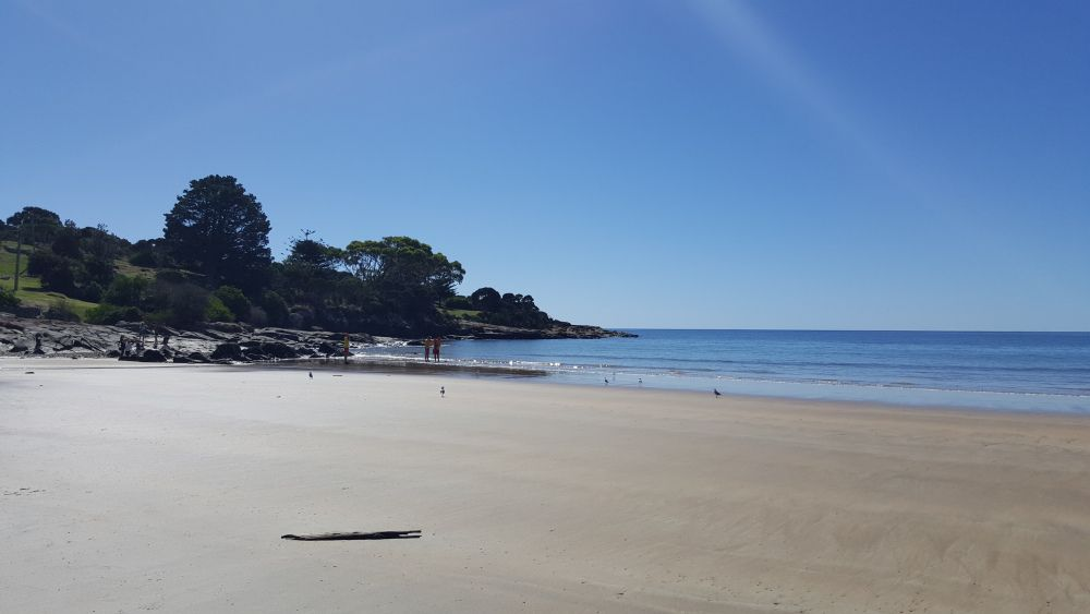 bluff beach.jpg
