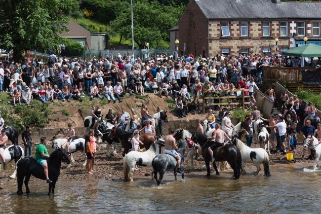 horse fair.jpg