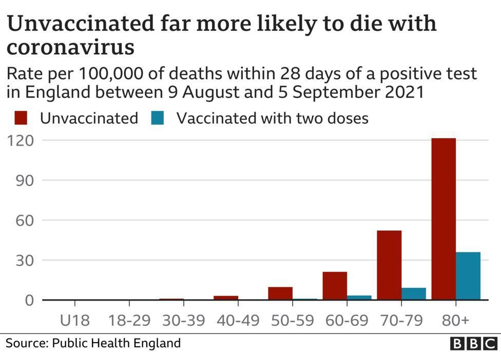 _120565364_optimised-deaths_by_vax_status.png.e8b6811dd6e6ce9a735d2de15c3014e8.png